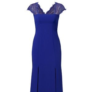 BCBGMAXAZRIA Julia Fitted Lace-Back Gown